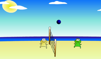 Frosch Volleyball 2